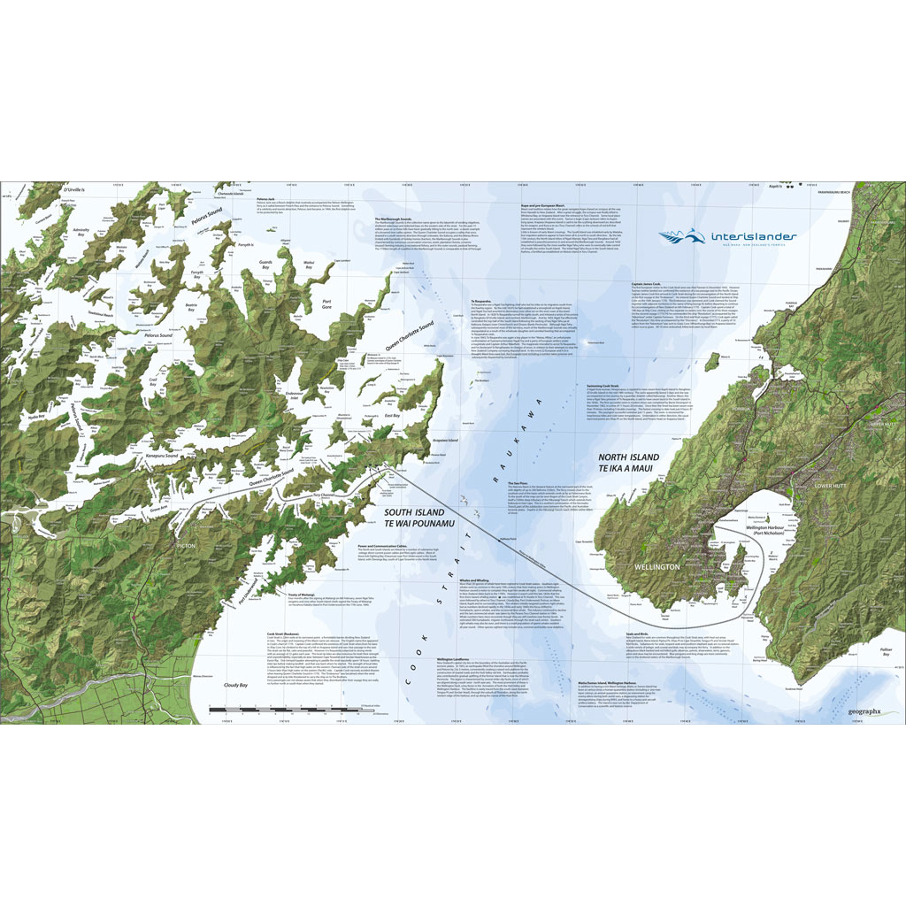 Westland/Tai Poutini National Park (3D) - Geographx on devils tower national park, curecanti national park, illinois national park, new york national park, golden gate bridge national park, civil war fort national park, iowa national park, independence national park,